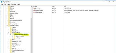 FlexNet Manager Platform_reg.JPG