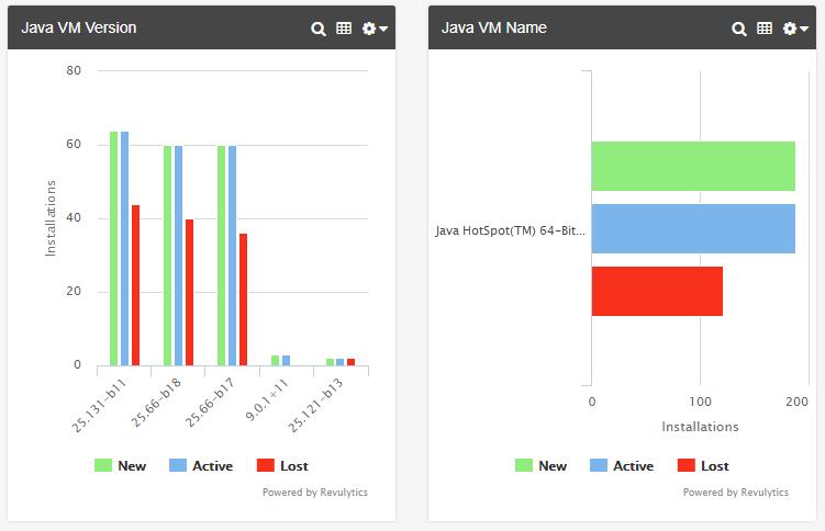 4_Revulytics-Java-VM-Report.png