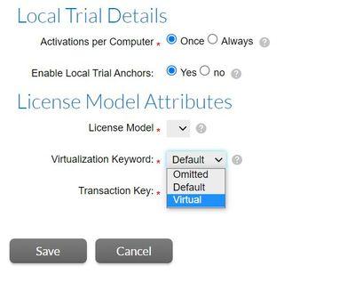 Virtualization Keyword.JPG
