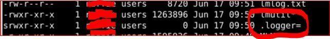 logger file.JPG