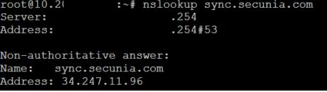 sync.secunia.com.png